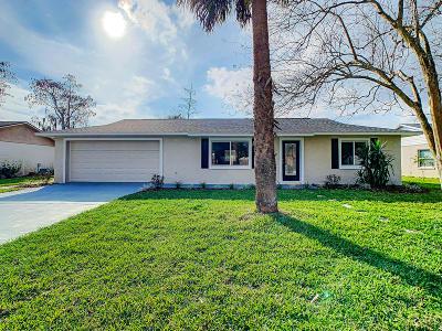 Port Orange Single Family Home For Sale: 1325 W Dexter Drive