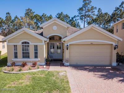 Port Orange Single Family Home For Sale: 3833 Calliope Avenue