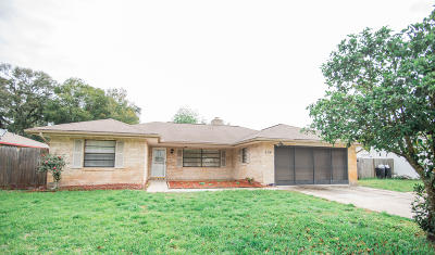 Port Orange Single Family Home For Sale: 504 Legume Drive