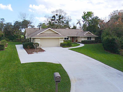 New Smyrna Beach Single Family Home For Sale: 910 Arrowroot Court