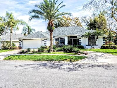 Port Orange Single Family Home For Sale: 5771 Falling Tree Lane