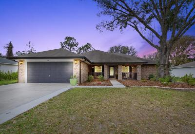 Palm Coast Single Family Home For Sale: 24 Round Thorn Drive