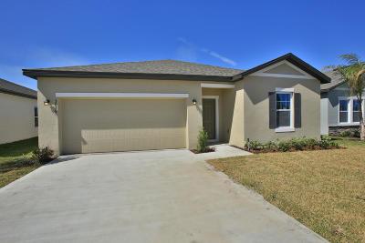 New Smyrna Beach Single Family Home For Sale: 3056 Gibraltar Boulevard
