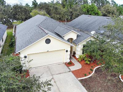 Port Orange Single Family Home For Sale: 1813 Tara Marie Lane