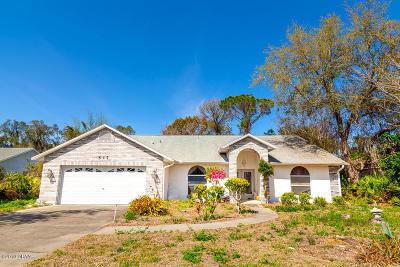 Port Orange Single Family Home For Sale: 517 Moon Rise Drive