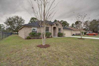Palm Coast Single Family Home For Sale: 186 Parkview Drive