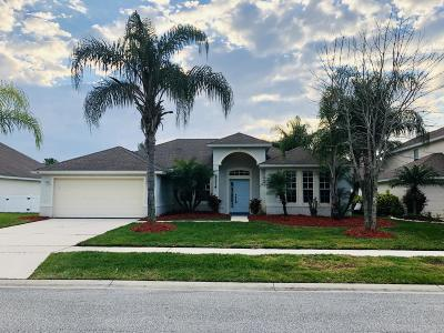 Port Orange Single Family Home For Sale: 5314 Georgia Peach Avenue