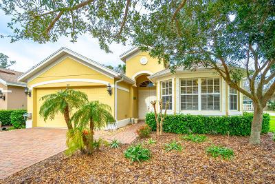 Port Orange Single Family Home For Sale: 3817 Calliope Avenue