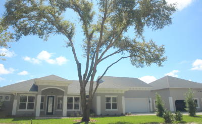 Spruce Creek Fly In Single Family Home For Sale: 2538 Tail Spin Trail