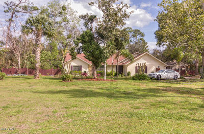 Port Orange Single Family Home For Sale: 5805 Nob Hill Boulevard