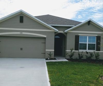 Volusia County Rental For Rent: 5343 Sandpine Haven Lane