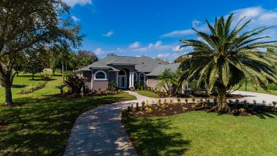 Port Orange Single Family Home For Sale: 5952 Raleigh Barrows Court