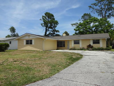 Daytona Beach Single Family Home For Sale: 1317 Golfview Drive