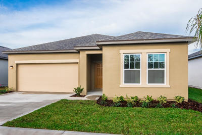 New Smyrna Beach Single Family Home For Sale: 3066 Gibraltar Boulevard
