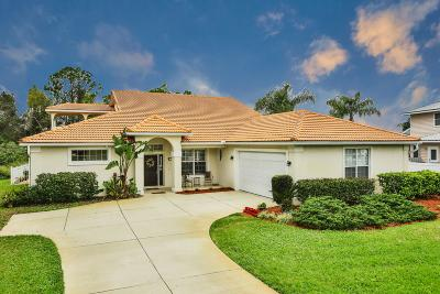 Port Orange Single Family Home For Sale: 789 Falcon Drive