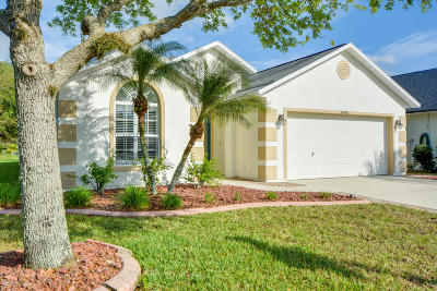 Pelican Bay, Ashton Lakes, Cypress Head, Sabal Creek, Sanctuary On Spruce Creek, Spruce Creek Fly In, Villages Of Royal Palm, Waters Edge Single Family Home For Sale: 6542 Shahab Lane