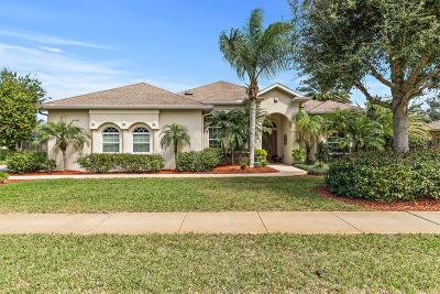 Ormond Beach Single Family Home For Sale: 3113 Sperrin Drive