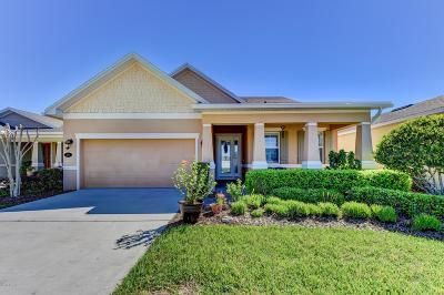 Deland Single Family Home For Sale: 215 Ravenshill Way