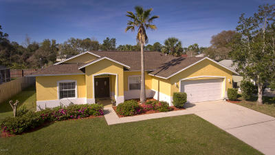 Palm Coast Single Family Home For Sale: 60 Franciscan Lane