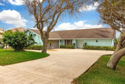 Ponce Inlet Single Family Home For Sale: 57 Daggett Cove Drive