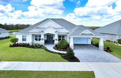 New Smyrna Beach Single Family Home For Sale: 3204 Monaco Boulevard