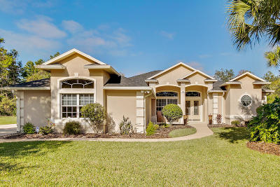 Ormond Beach Single Family Home For Sale: 1408 Newry Circle