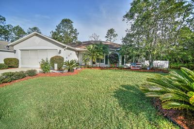 Palm Coast Single Family Home For Sale: 23 Pine Hurst Lane