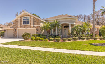 Pelican Bay, Ashton Lakes, Cypress Head, Sabal Creek, Sanctuary On Spruce Creek, Spruce Creek Fly In, Villages Of Royal Palm, Waters Edge Single Family Home For Sale: 6634 Merryvale Lane