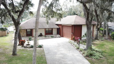 Port Orange Single Family Home For Sale: 6220 Yosemite Drive
