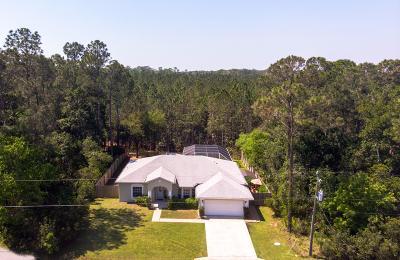Palm Coast Single Family Home For Sale: 16 Zinnia Court