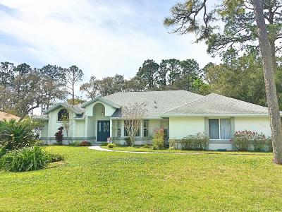 Port Orange Single Family Home For Sale: 5980 Pelham Drive
