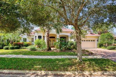 Palm Coast Single Family Home For Sale: 45 River Trail Drive