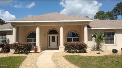 Port Orange Single Family Home For Sale: 2060 Country Farms Road