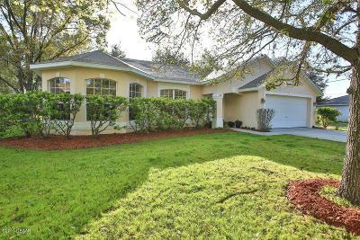 Palm Coast Single Family Home For Sale: 20 Wheeling Lane