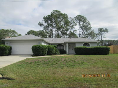 Palm Coast Single Family Home For Sale: 19 Weidner Place
