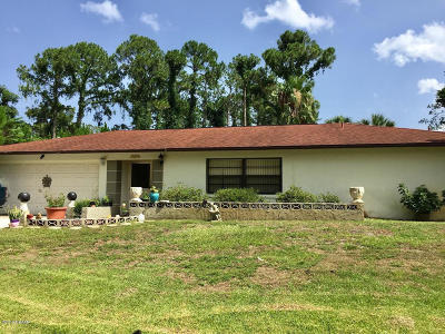 Palm Coast Single Family Home For Sale: 64 Parkview Drive