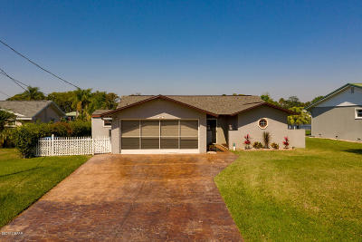 Ormond Beach Single Family Home For Sale: 996 Shockney Drive