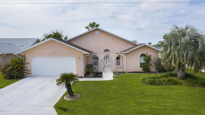 Palm Coast Single Family Home For Sale: 93 Colechester Lane