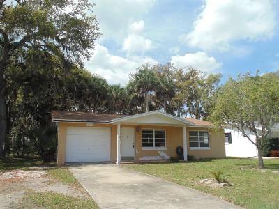 Port Orange Single Family Home For Sale: 5068 Palmetto Street