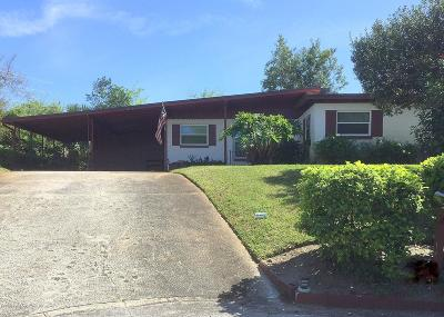 Daytona Beach Single Family Home For Sale: 907 Shady Park Terrace