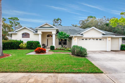 Ormond Beach Single Family Home For Sale: 20 Southern Trace Boulevard