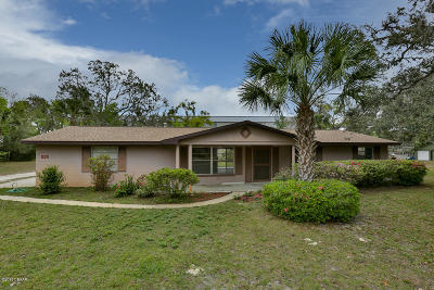 Port Orange Single Family Home For Sale: 925 Boyte Street