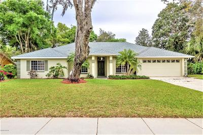 Port Orange Single Family Home For Sale: 6164 Half Moon Drive