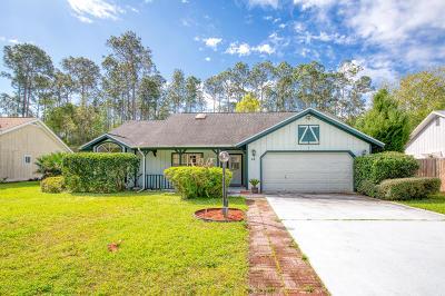 Palm Coast Single Family Home For Sale: 19 Weyanoke Lane