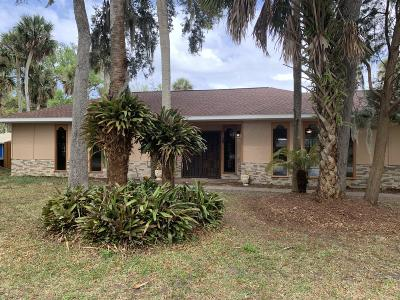 Ormond Beach Single Family Home For Sale: 399 Hand Avenue