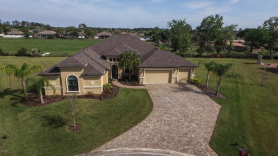 Ormond Beach Single Family Home For Sale: 19 River Chase Way
