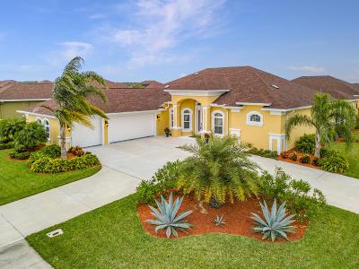 New Smyrna Beach Single Family Home For Sale: 507 Campana Street