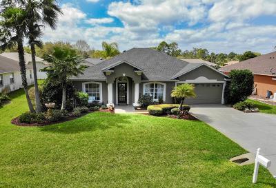Palm Coast Single Family Home For Sale: 6 Walt Place