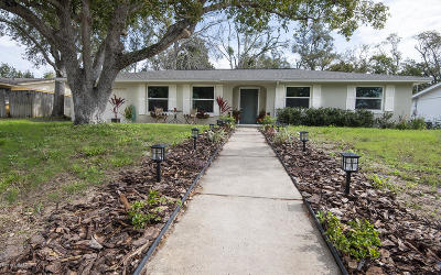 Ormond Beach Single Family Home For Sale: 905 Woodmere Circle