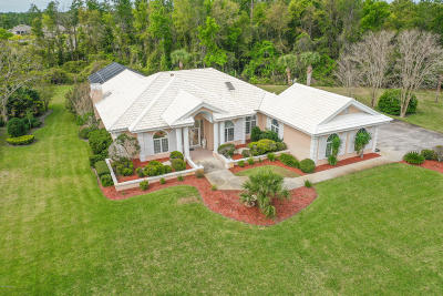 Ormond Beach Single Family Home For Sale: 6 Broadcreek Circle